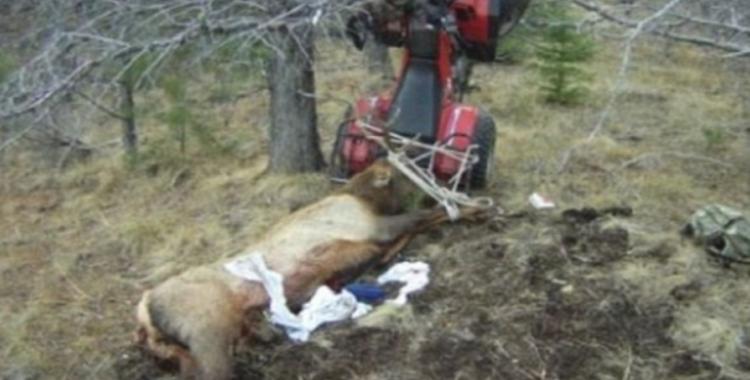 hunter-impaled-on-antler-1